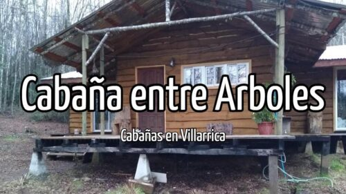 Cabaña entre Arboles